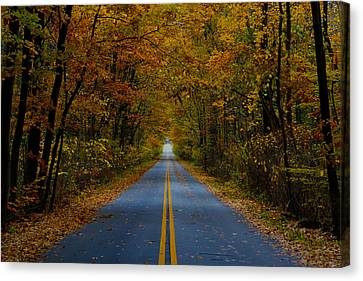 Canvas Print featuring the photograph Fall Colors by Jerome Lynch