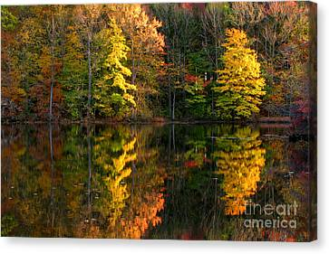 Fall Scene Canvas Print by Olivier Le Queinec