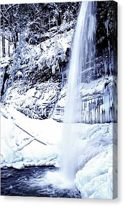 Falls Of Hills Creek Canvas Print by Thomas R Fletcher