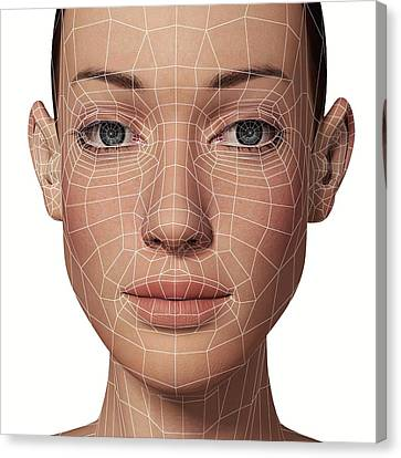 Female Head With Biometric Facial Map Canvas Print by Alfred Pasieka