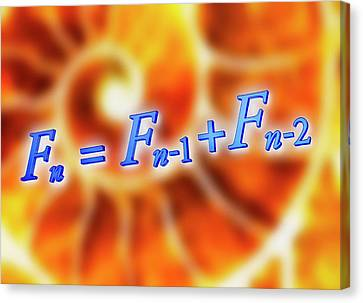 Fibonacci Sequence Equation Canvas Print by Alfred Pasieka