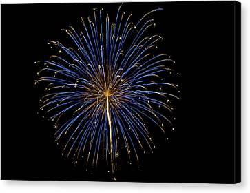 Fireworks Bursts Colors And Shapes Canvas Print