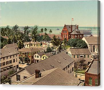 Tropical Bird Postcards Canvas Print - Florida Key West, C1900 by Granger