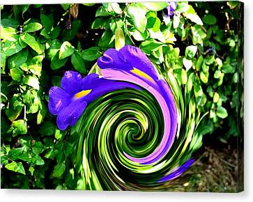 Flower Abstract Study-2 Canvas Print by Anand Swaroop Manchiraju