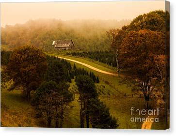 Foggy Autumn Country Road Canvas Print by Deborah Scannell