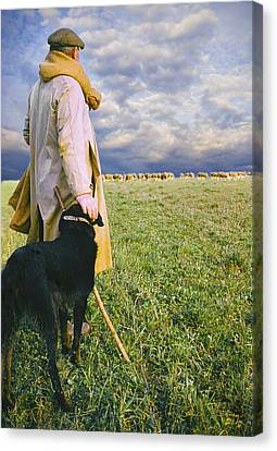 French Shepherd Canvas Print by Chuck Staley