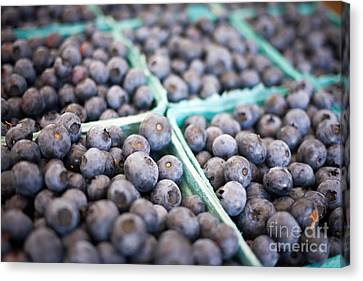 Fresh Blueberries Canvas Print by Edward Fielding