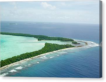 Funafuti Atol On Tuvalu From The Air Canvas Print by Ashley Cooper