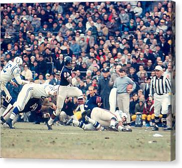 Gale Sayers Canvas Print by Retro Images Archive