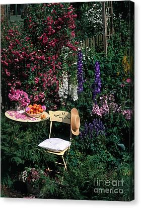 Garden With Chair Canvas Print by Hans Reinhard
