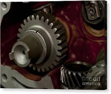 Gears  Canvas Print by Wilma  Birdwell
