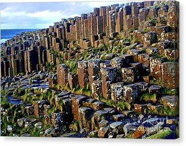 Giant's Causeway Canvas Print by Nina Ficur Feenan
