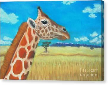 Giraffe Dreaming Canvas Print
