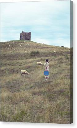 Girl With Sheeps Canvas Print