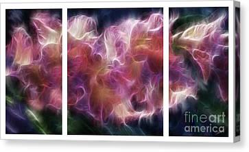 Gladiola Nebula Triptych Canvas Print