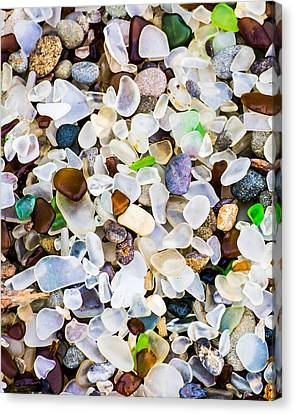 Glass Beach Canvas Print by Priya Ghose