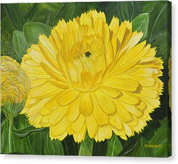 Golden Punch Canvas Print