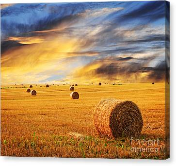 Harvest Canvas Print - Golden Sunset Over Farm Field With Hay Bales by Elena Elisseeva