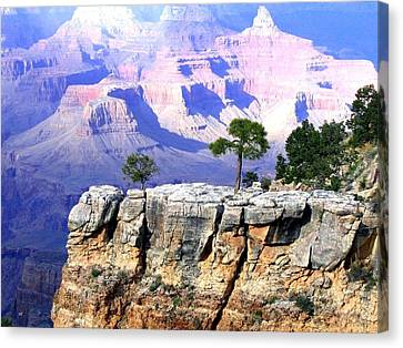 Canvas Print featuring the photograph Grand Canyon 1 by Will Borden