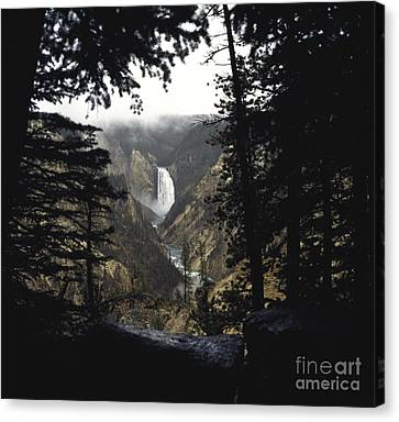 Grand Canyon Of The Yellowstone-signed Canvas Print
