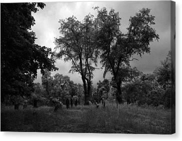 Graveyard 1 Canvas Print