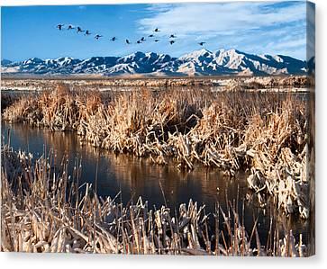 Snowy Day Canvas Print - Great Salt Lake Utah by Utah Images