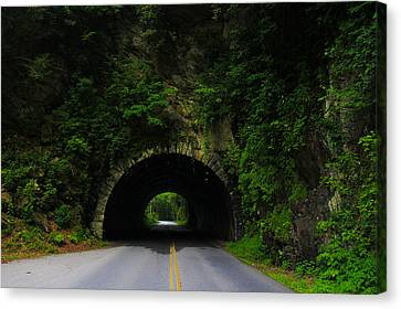 Great Smoky Mountains Canvas Print by Jerome Lynch
