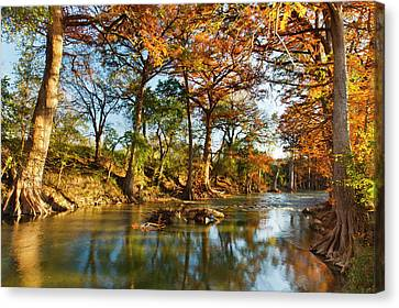 Guadalupe River, Texas Hill Country Canvas Print by Larry Ditto