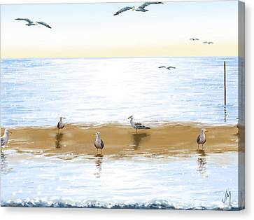 Gulls Canvas Print by Veronica Minozzi