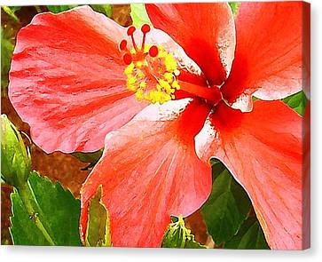 Happy Hibiscus Canvas Print by James Temple