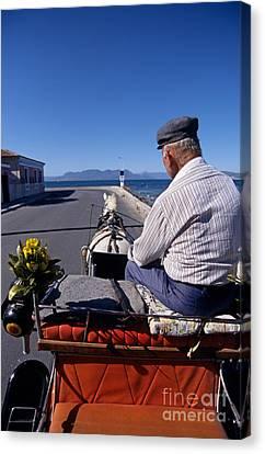Gulf Canvas Print - Having A Ride In Aegina Island by George Atsametakis