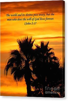 Heavenly Sunset Canvas Print by Deb Halloran