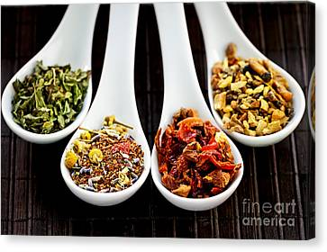 Herbal Teas Canvas Print by Elena Elisseeva