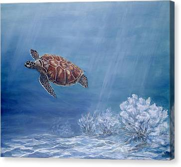 Honu Canvas Print by Dorothea Hyde