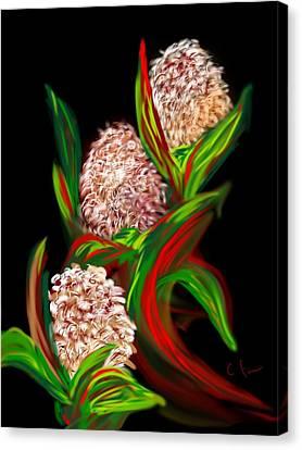 Hyacinth Canvas Print by Christine Fournier