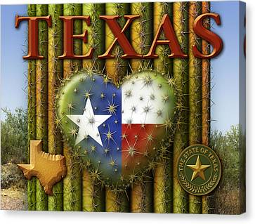 I Love Texas Canvas Print by James Larkin