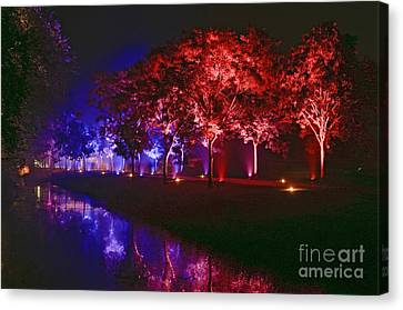Illumina Light Show At Schloss Dyck Germany Canvas Print by David Davies