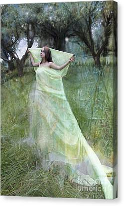 In The Orchard Canvas Print by Angel  Tarantella
