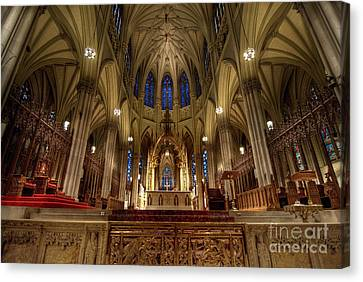 Ceiling Canvas Print - Inside St Patricks Cathedral New York City by Amy Cicconi