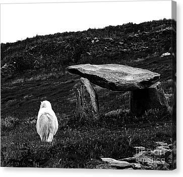 Irish Standing Stones Canvas Print by Patricia Griffin Brett