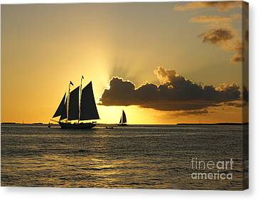 Canvas Print featuring the photograph Key West Sunset by Olga Hamilton