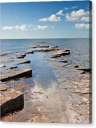 Kimmeridge Bay Seascape Canvas Print by Matthew Gibson