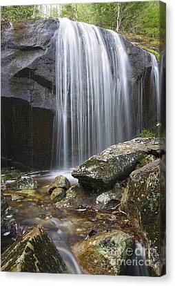 Porcupine Brook - Kinsman Notch New Hampshire Usa  Canvas Print by Erin Paul Donovan