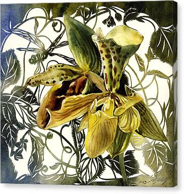 Ladyslipper Orchid Canvas Print