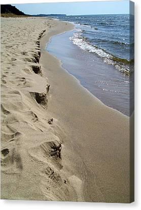 Lake Michigan Shoreline Canvas Print by Michelle Calkins