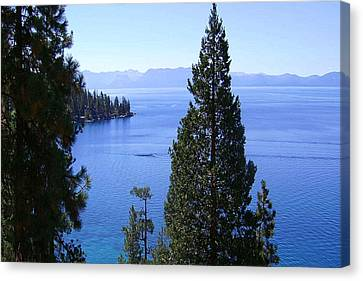 Lake Tahoe 4 Canvas Print by J D Owen