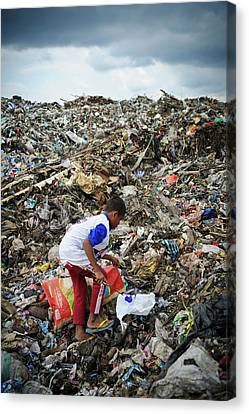 Landfill Scavenging Canvas Print by Matthew Oldfield