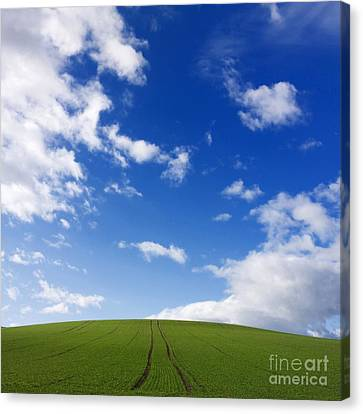 Landscape In France Canvas Print