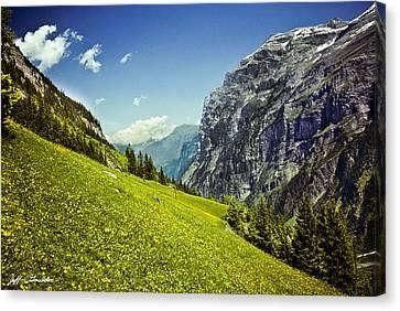 Lauterbrunnen Valley In Bloom Canvas Print by Jeff Goulden