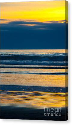 Layers Canvas Print by Dana Kern